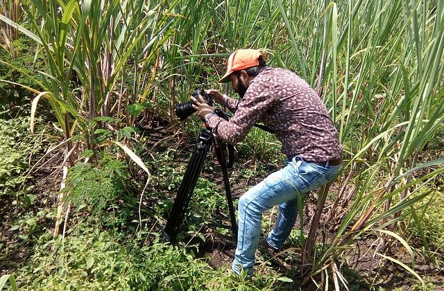 documentry-filmmaker