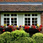 Types of Windows You Can Install to Your New House