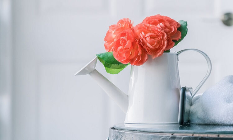 Best Decorative Watering Can Options for Gardeners
